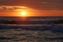 Australian animals, Seascape and Sunset Photography Tour