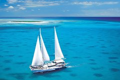 Ocean Spirit Michaelmas Cay Dive and Snorkel Cruise from Cairns