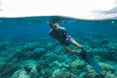 Muiron Islands Dive or Snorkel
