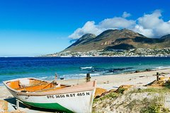 Best Cape PeninsulaSealsCape PointCape of GoodhopePenguinsK'bosch tour