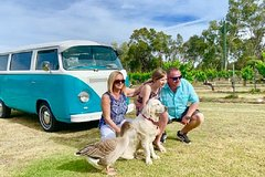 Half Day VW Kombi Food and Wine tour