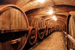 Full-Day Amarone Wine Tour and Verona from Venice
