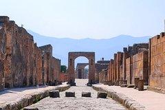 Pompeii & Herculaneum w/ Wine Tasting from Rome!