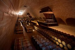 Antinori Bottaia Exclusive Wine Tour in Chianti Classico - Ultimate Vip Tou