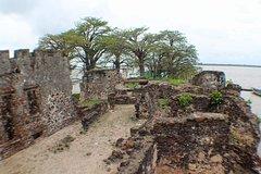 Roots James Island