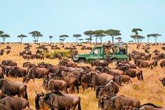 6 days Masai Mara and Serengeti Safari