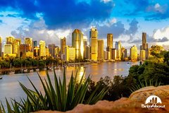 Best Of Brisbane Incl Lone Pine - Full Day Private Customised Tour