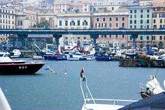 Private Transfer: Civitavecchia Port to Genoa and vice versa