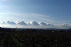Verona - Art & wine