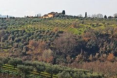 Ramble Through The Rolling Hills Of Chianti (6 H) plus Lunch and Wine tasti
