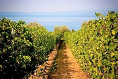 Amarone wine meets Lake Garda