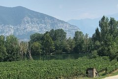 Half day wine tour from Milan: semi-private sparkling wine tour to Franciac
