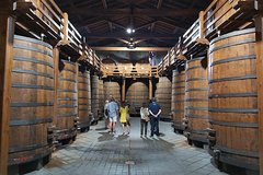 Etna Wineries Tour - Small Groups from Taormina