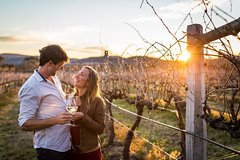Stanthorpe Winery Experience