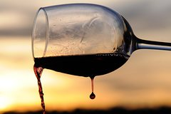 ROME LUXURY TOURS: Private wine tasting session in Vineyards with transport