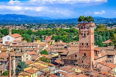Regular Wine Tour in Chianti and visit of Lucca - small group sharing