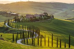 Florence Hop-On Hop-Off Sightseeing Tour & Wine Tour in Chianti - Ultim