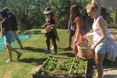 Visit Farm, Cellar, Vineyards with Cooking Class