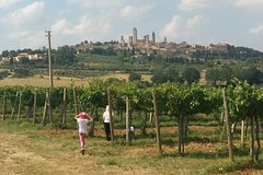 San Gimignano Monteriggioni Tuscany Chianti Wine Tasting Fullday from Flore
