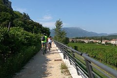 Bike Tour Bardolino Garda and Costermano with wine tasting