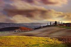 Discover Tuscany with a local. Full-day Private tour from Florence and Sien