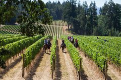 "Horseback tour and Wine Tasting with ""CASANOVA"""