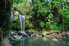 Tamborine Mountain & Gold Coast Tour