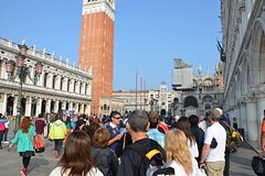 Guided Tour of Venice from Milan by Train