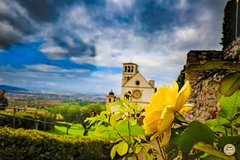 Montepulciano Wine Tasting and Assisi Private Day Tour from Rome