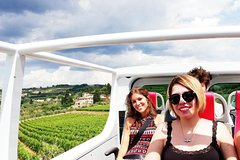Private Wine Tour in Van Escusivo