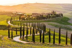 Private Day Trip from Florence to Siena and San Gimignano