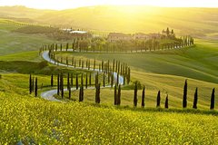 San Gimignano and Volterra Private Day Tour with Wine Tasting & Lunch i