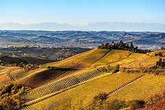 Radda in Chianti: Wine Tasting Tour with lunch at the Castle