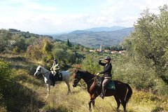 Horseback riding thru olive groves with olive oil tasting and Lunch in a ma