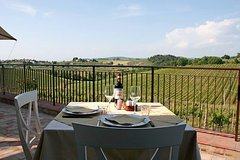 Livorno Shore Excursion: Chianti and Tuscany Countryside Private Wine Tour