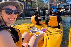 Day Tour from Canberra to Batemans Bay - with Oyster Tasting Kayak Tour