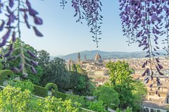 Gardens of Florence Private Walking Tour