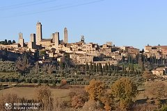 Ramble Through The Rolling Hills Of Chianti (6 Hrs) + Lunch & Wine Tast