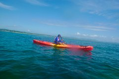 Byron Bay Iso Guided Kayak Tour