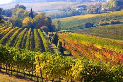 Two nights in Chianti: tasting by electric bike with overnight stay