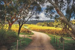 McLaren Vale Winery Small Group Tour from Adelaide, Wine Tasting and Lunch