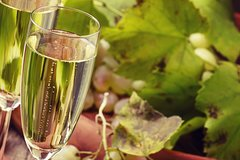 Day trip from Milan: Franciacorta, a paradise for wine lovers! - private to
