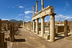 Skip-The-Line Pompeii Lunch&WineTasting from Naples Port