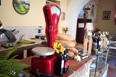 Wine Cheese and EVO Oil Tastings in Tuscany Full-Day from Rome