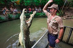 Tour to Port Douglas Town and Hartley's Crocodile Adventures