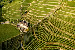 Lake Como & UNESCO Dry-stone Walls Vineyards
