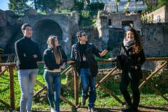 Skip the Line! Guided Tour of the Colosseum, Forums & Ancient Rome
