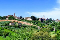 Discover Siena in one hour walk