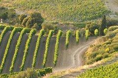 Tuscan Wine, Food & Romance escape