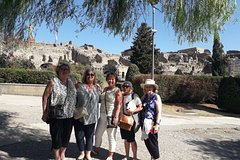 Pompeii and Herculaneum Skip-The-Line with Lunch&WineTasting from Naple